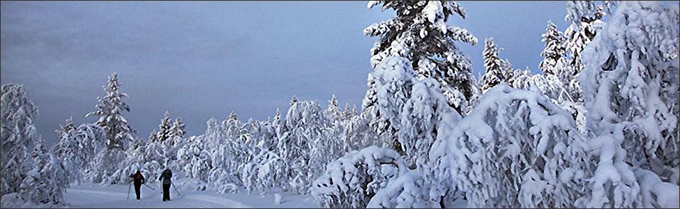 Travesía del Lemmenjoki con raquetas