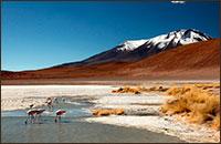 Viajes a Bolivia